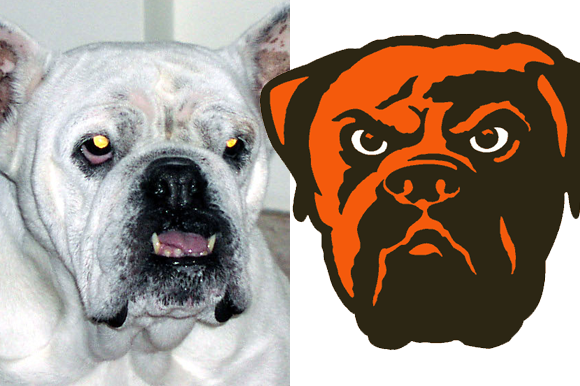 Browns' old secondary logo was based on a snoring, silly bulldog